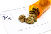 Medical Cannabis and Children With Autism