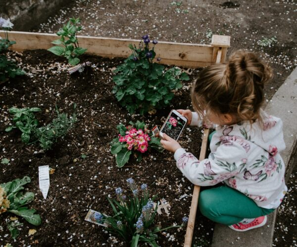 Worthwhile ways of promoting growth mindsets in your child