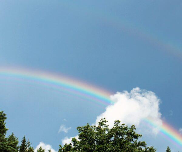 Double Rainbows – Sexual Orientation, Gender Identity, and Neurodiversity
